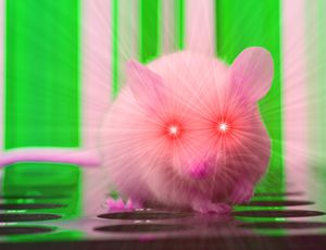 Researchers offer mice infrared vision, turning them into small Predators