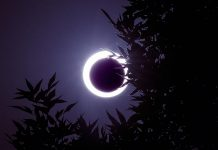 In 300 Days A 3 Minute 'Ring Of Fire' Eclipse Will Race Throughout Earth Simply Hours After Christmas Day