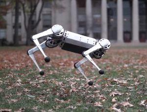MIT Mini Cheetah robotic will backflip into your coronary heart
