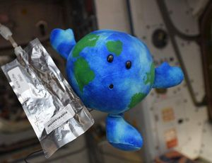 On SpaceX's Team Dragon a star is born: A plushie toy of Earth