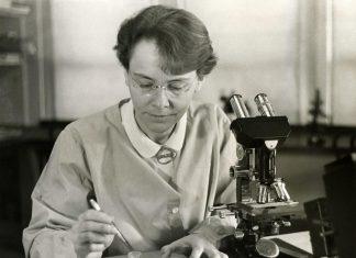 Females Who Altered Science: A Brand-new Lens On Inspiring Female Nobel Reward Winners