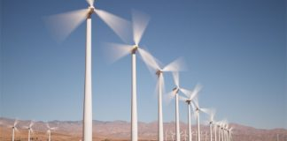 Individuals who live near wind turbines choose them to solar and fossil plants