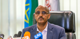 Ethiopian CEO states the airline company still 'thinks in Boeing' after 737 Max crash (Bachelor's Degree)
