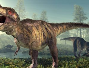 T. rex was in fact larger than we believed
