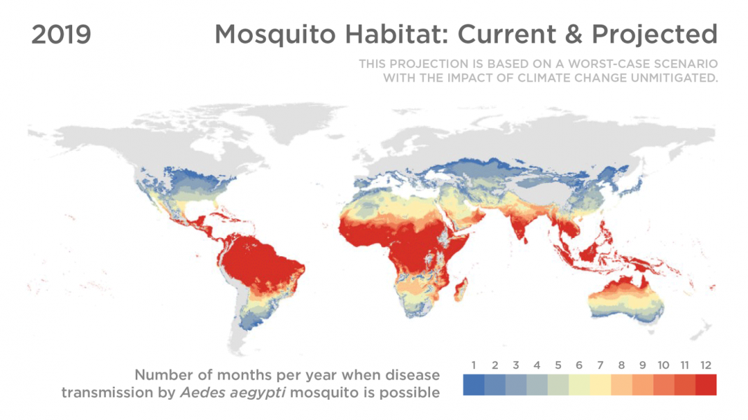 CHART: Where Disease-Carrying Mosquitoes Will Enter The Future