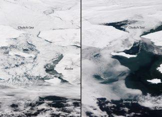 The Bering Sea Must Be Frozen Today. It Isn't.