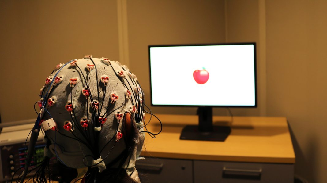 Scientists Check Whether or not Mind Stimulation May Assist Sharpen Getting old Reminiscence
