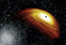 Occasion Horizon Telescope noticed a black gap. It might change every little thing