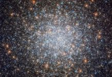 Hubble telescope sees half a million stars in one wild area location