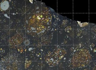 Astronomers Discover a Portion of a Comet Inside a Meteorite