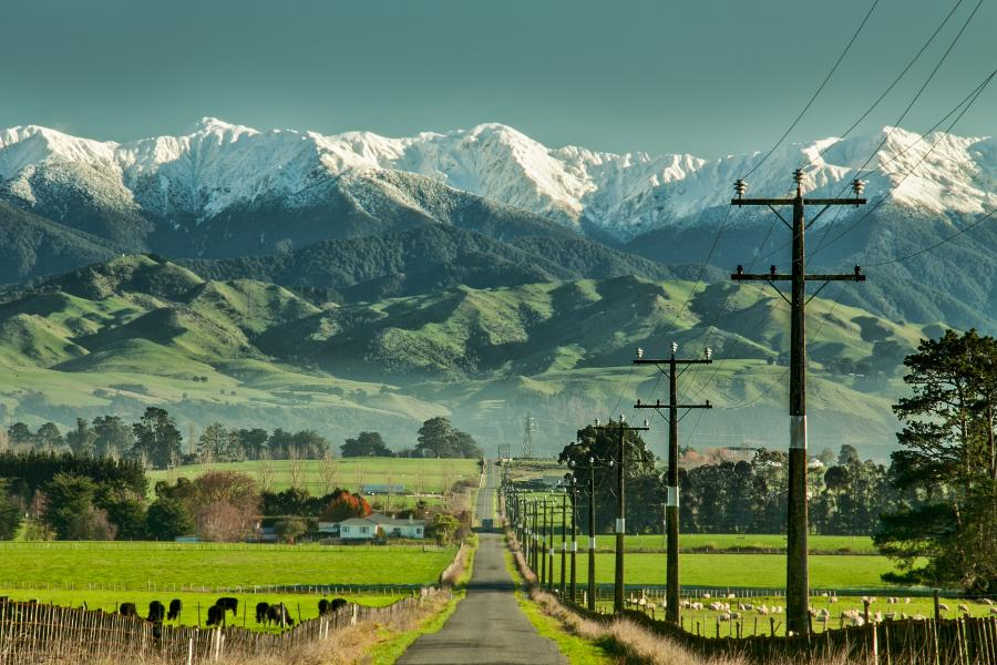New Zealand's Environment Remains in Serious Difficulty