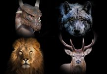 If the Animals from 'Video Game of Thrones' Homes Fought, Which One Would Win?