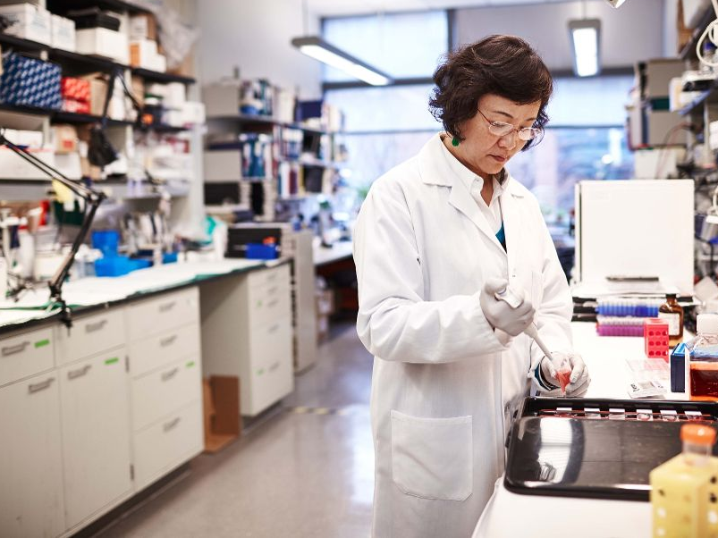 Biogen has actually seen $19 billion erased considering that an appealing drug tumbled– and one expert has a vibrant concept for how the biotech leader can recuperate (BIIB)