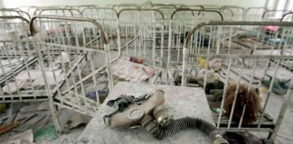 A Gripping History of the Nuclear Catastrophe at Chernobyl