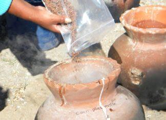 How to brew ancient Wari beer