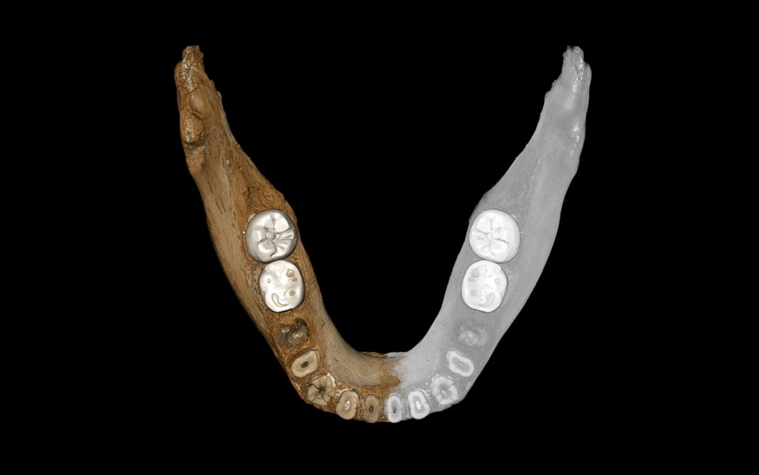 Found: First Tibetan Proof of Neanderthal Cousins, the Denisovans