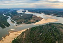 Just a 3rd of Earth's longest rivers still run totally free