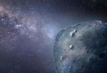 Tremendous shark-size asteroid comes inside placing distance of satellites
