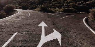 What Matters The Majority Of on the Roadway to Scientific Success?