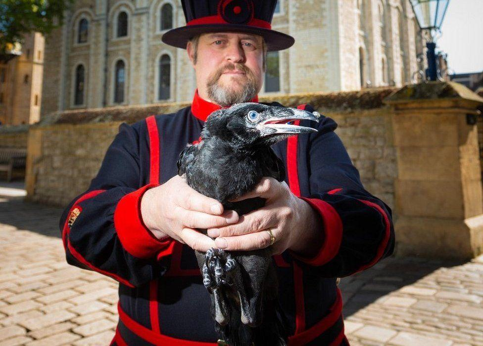 Post-Brexit UK Is Safe, Thanks To Its Legendary Ravens