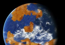 Theory proposes that Venus might have been habitable, however a big ocean decreased its rotation, eliminating it