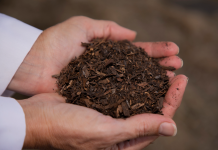 Composting bodies to turn them into soil will quickly be legal in one United States state– part of a growing green death pattern