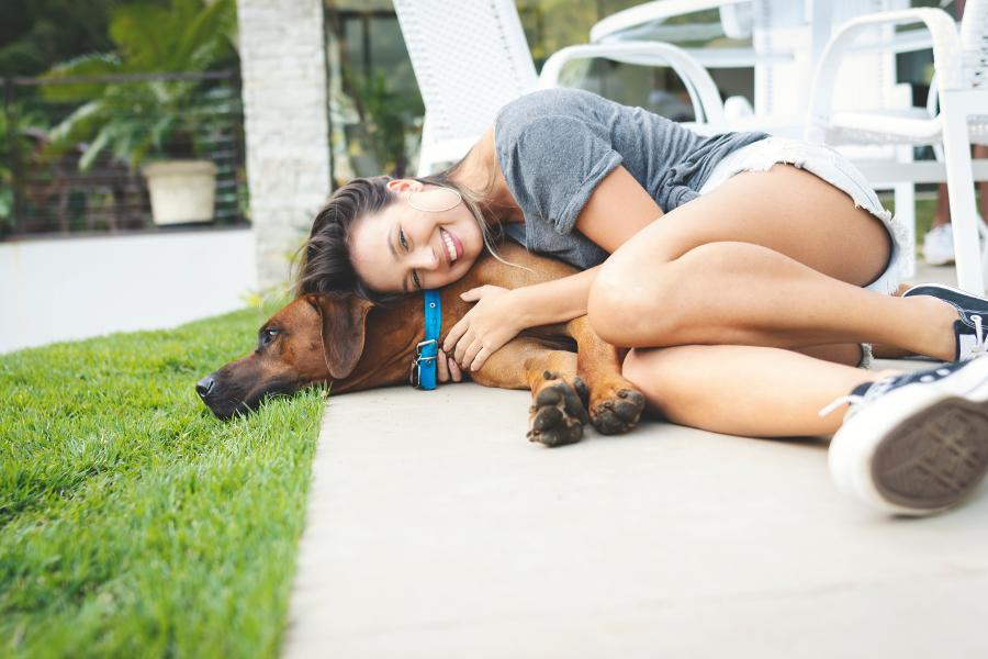 Are You Feeling Lonely? How About Getting A Family pet?