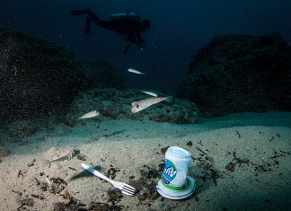 More plastic contamination is swirling in the deep ocean than in the Great Pacific Trash Spot. It's even appearing in the intestinal tracts of sea animals.