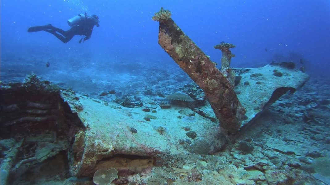Wartime Story Leads Scuba Divers to Undersea WWII Wreck of Missing Out On United States Pilot