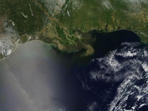 Gulf of Mexico 'dead zone' might take off to the size of Massachusetts