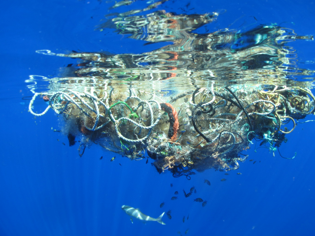 The huge plastic-cleaning gadget in the Great Pacific Trash Spot most likely will not injure sea animals– however there's still a huge issue to figure out