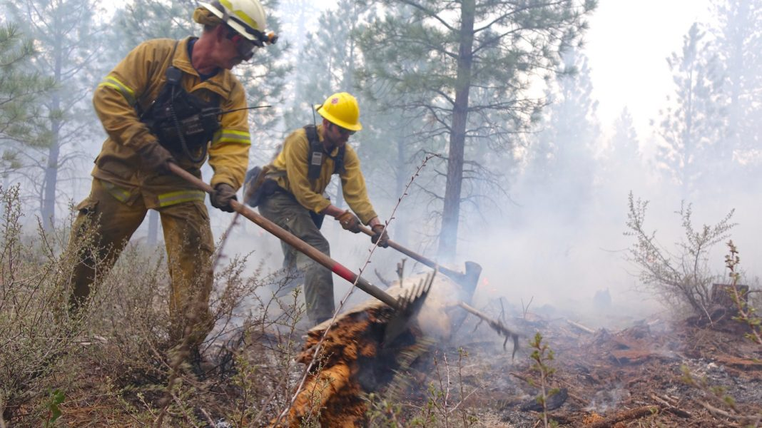 More Wildfires Bring Concentrate On How All That Smoke May Damage Firefighters