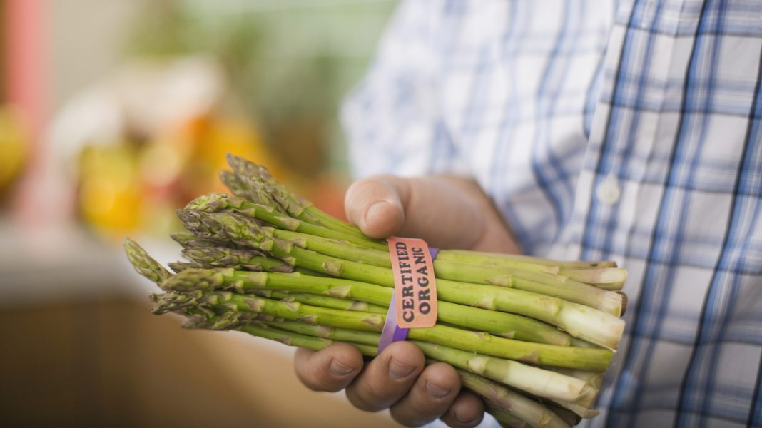 Why Food Reformers Have Combined Sensations About Eco-Labels