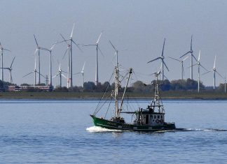 Renewable Resource Is Now The Least Expensive Alternative – Even Without Aids