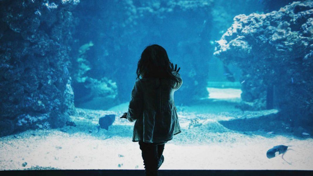 Do Not Feel Guilty for Having 'Just' One Kid