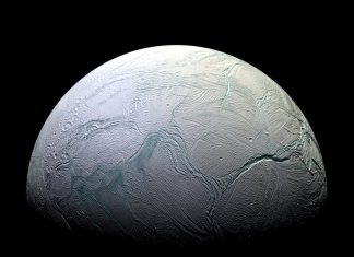 Life on Icy Alien Worlds May Resemble Creatures Under Submerged Hawaiian Volcano