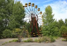 Why Didn't Chernobyl's Radiation Eliminate the Plants There?