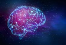 How the Brain and Body Interact to Develop Believing