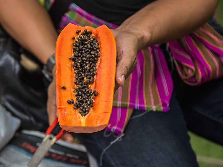 Papayas infected with salmonella germs have actually sickened 62 individuals in 8 states