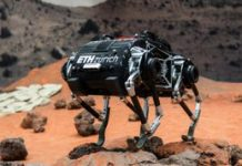 Adorable 'n' weird SpaceBok robotic made to get on other worlds
