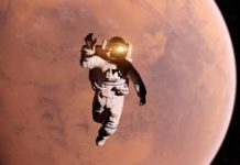 Mars astronauts may forestall muscle losing with pink wine antioxidant