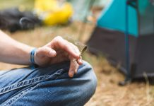 Teenagers Are Most Likely to Attempt Controlled Substance in the Summer Season