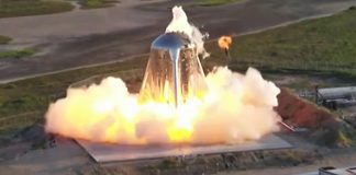 First Free Flight of SpaceX's Starhopper Aborted After Engine Fire