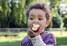 Organic Apples Have Method More Beneficial Germs Than Traditional Ones