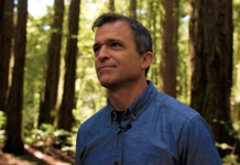 Conserving California's redwoods, one tree at a time video