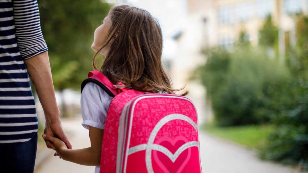 Usage Alexa to Contribute a Knapsack to a Kid in Requirement