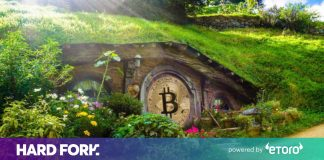 New Zealand greenlights Bitcoin wage guideline– however it's still a bad concept