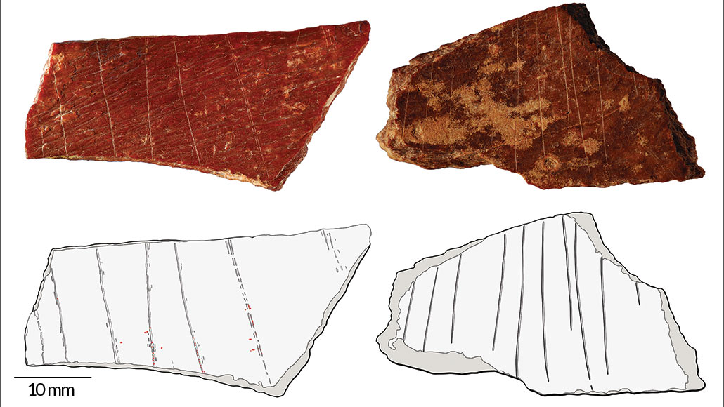 Engraved bones expose that significance had ancient roots in East Asia