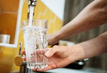 Can Maternal Fluoride Usage Throughout Pregnancy Lower Kid's Intelligence?