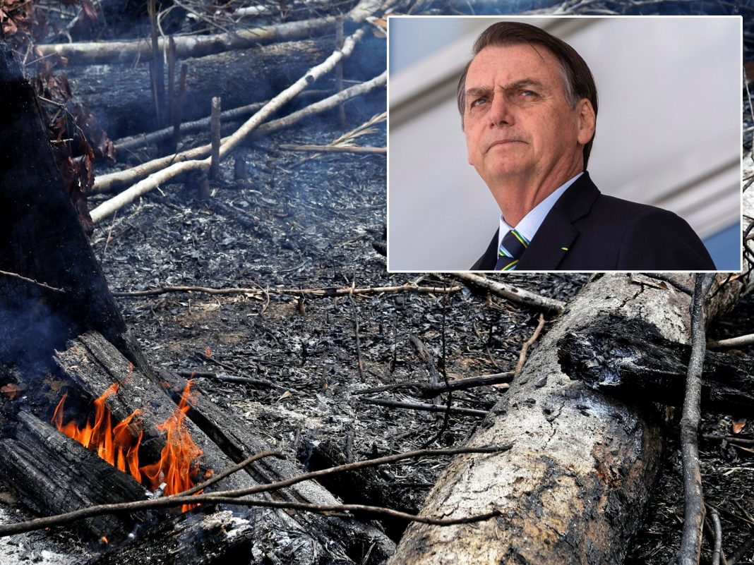 Brazil's president baselessly declared that NGOs set the Amazon on fire on function to make him look bad